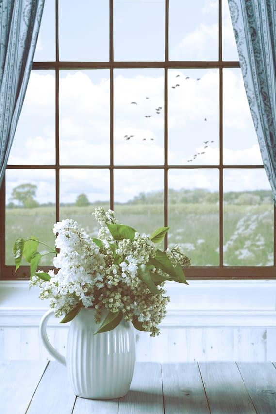 風水 窓 ガラス 大きさ 数 面積
